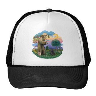 Saint Francis - Black Persian Cat Trucker Hat