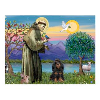 Saint Francis & Black-Tan Cocker Spaniel Postcard