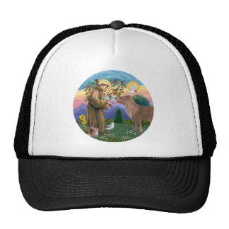 Saint Francis - Shetland Pony Trucker Hat