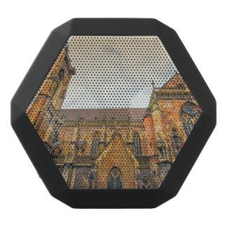 Saint Martin's Church, Colmar, France Black Bluetooth Speaker