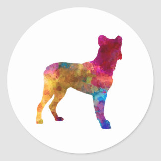 Saint Miguel Cattle Dog in watercolor Classic Round Sticker