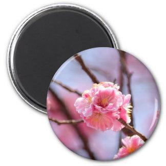 Sakura 2 Inch Round Magnet