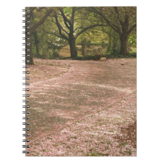 Sakura Cherry Blossom Path Spiral Notebook