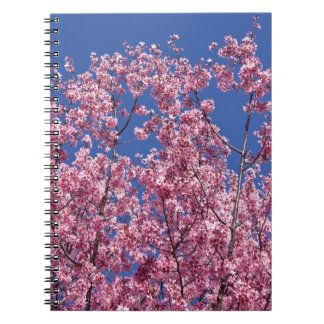 Sakura Cherry Blossoms Into The Blue Spiral Note Books
