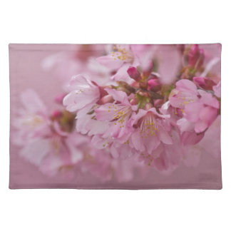 Sakura Cherry Blossoms Pale Pink Reflections Place Mats