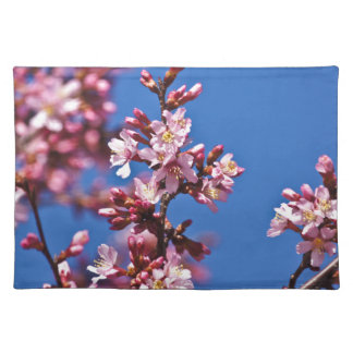 Sakura Cherry Blossoms Touching Blue Place Mats