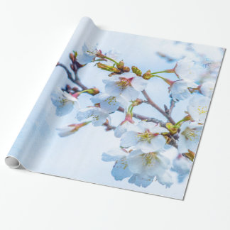 Sakura - Japanese Cherry Blossom Wrapping Paper
