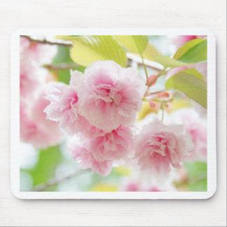 sakura mouse pad