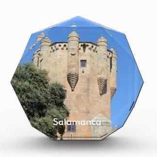 Salamanca, Spain. Tower del Clavero