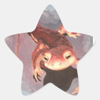 Salamander Stickers-Star Shaped Star Sticker