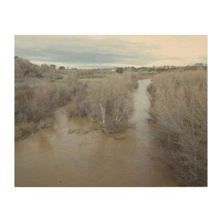 Salinas River North of Veterans Memorial Bridge Wood Print