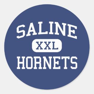 Saline Hornets Middle School Saline Michigan Round Sticker