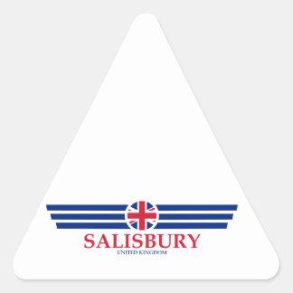 Salisbury Triangle Sticker