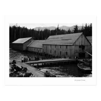 Salmon Cannery near Ketchikan, Alaska Postcard