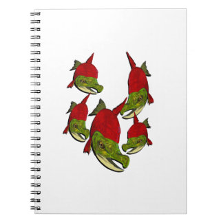 Salmon Flow Notebook