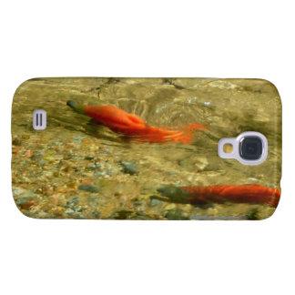 Salmon on the Run
