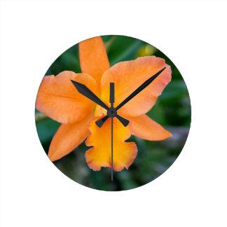 Salmon Orchid Round Clock