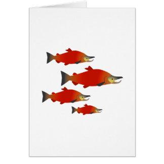 Salmon Rally Card