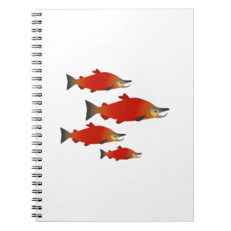 Salmon Rally Notebook