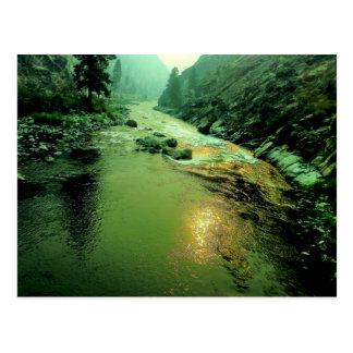 Salmon River in Idaho Postcard