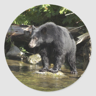 Salmon Spotting Black Bear Gifts Round Stickers