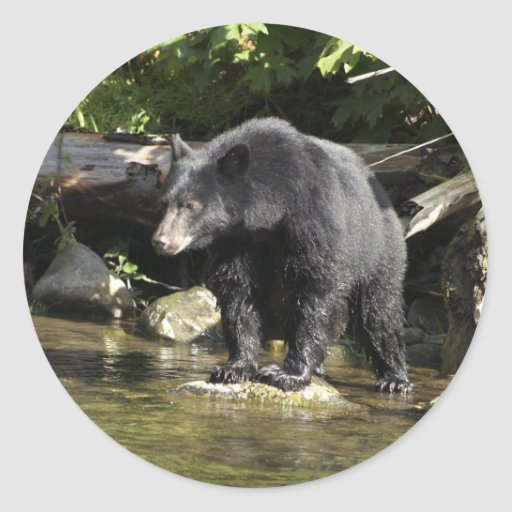 """Salmon Spotting"" Black Bear Gifts Round Stickers"