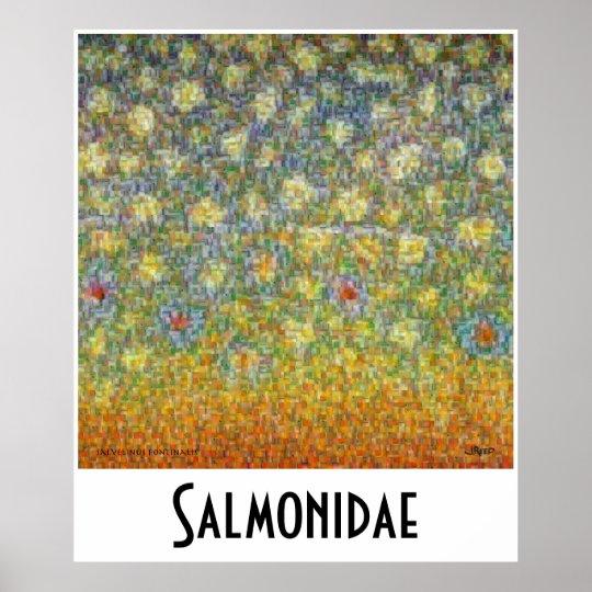 Salmonidae Skins Montage Postage Poster