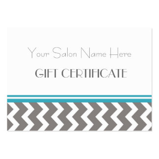 Salon Gift Certificate Teal Grey Chevron Pack Of Chubby Business Cards