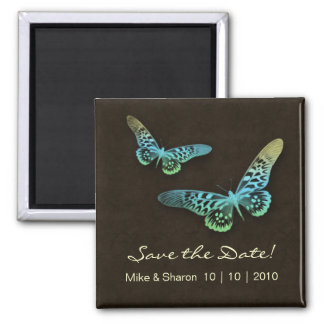 Salon Spa Butterfly Magnet Brown Blue Yellow