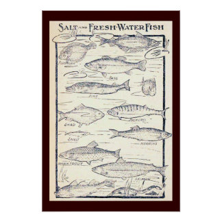 Salt and Fresh Water Fish Poster