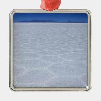 SALT FLATS METAL ORNAMENT