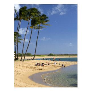 Salt Pond Park located on the island of Kauai Postcard