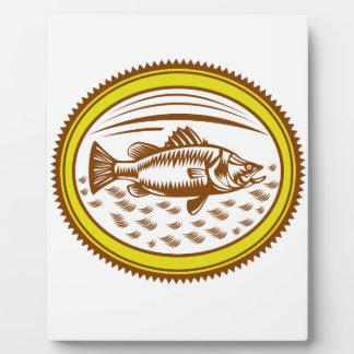 salt-water-barramundi-side-OVAL Plaque