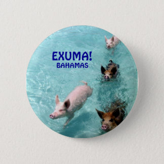 Salt Water Swimming Pigs button
