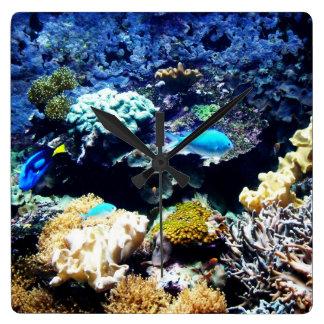 Saltwater aquarium Square clock