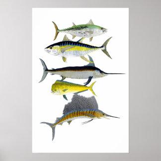 Saltwater Gamefish Art Poster