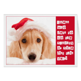 Saluki Christmas Greeting Cards