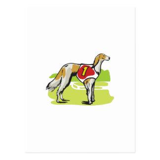 SALUKI DOG POSTCARD