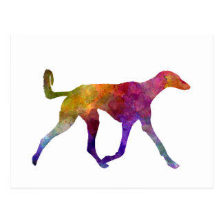 Saluki in watercolor postcard