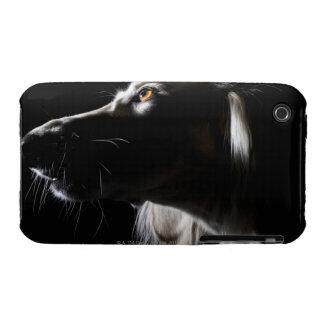 Saluki, portrait iPhone 3 cases