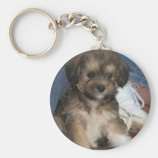 SAM KEY RING