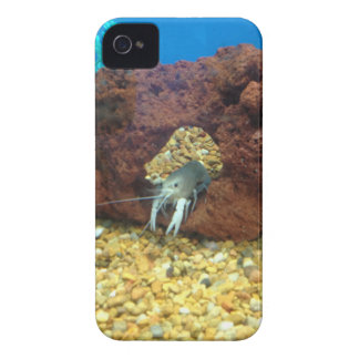 Sam the blue lobster crayfish iPhone 4 Case-Mate cases