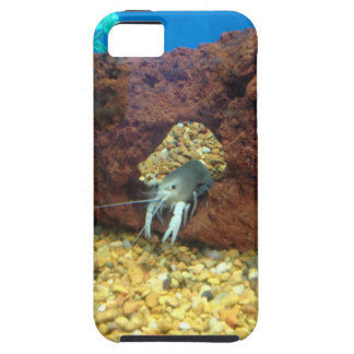Sam the blue lobster crayfish iPhone 5 case