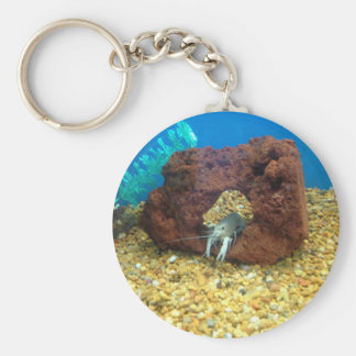 Sam the blue lobster crayfish keychain