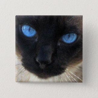 Sam the Siamese cat 2 Inch Square Button