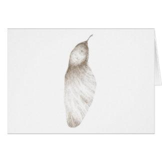 Samara seed (congregation) card