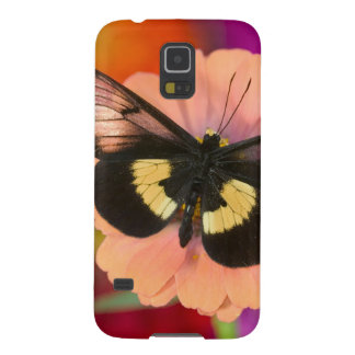Sammamish Washington Photograph of Butterfly 12 Galaxy S5 Case
