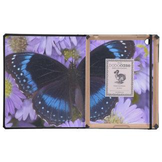 Sammamish Washington Photograph of Butterfly 20 iPad Case