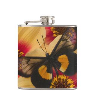 Sammamish Washington Photograph of Butterfly 39 Flasks