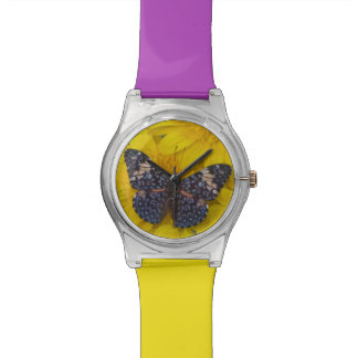 Sammamish Washington Photograph of Butterfly 43 Watch